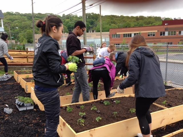 Volunteers planting in the Brass City Harvest urban garden in Waterbury, Connecticut.
