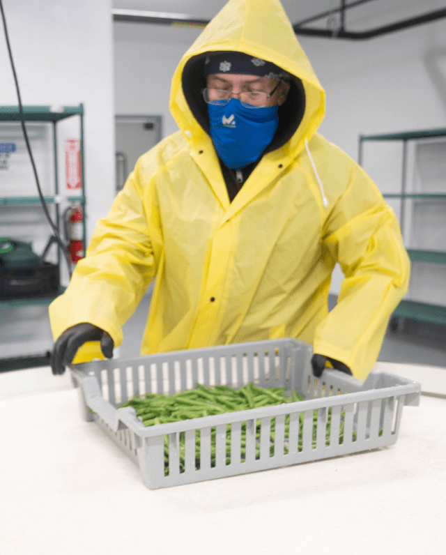 An employee of Brass City Harvest works to sanitize fresh produce.